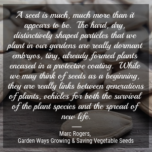 A quote about seeds.